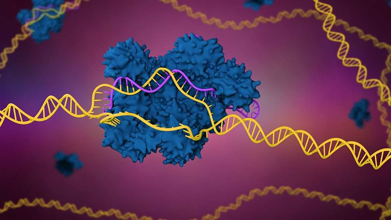 Genome editing - to feed, to fuel and to cure